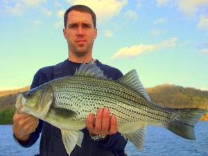 Lake Burton Big Hybrid Bass/ Fishing Guide