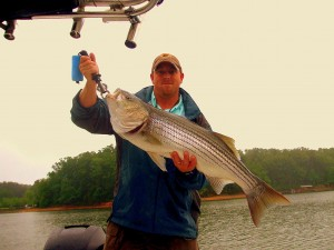 Fisihing Guide Wes Carlton with a 25lbs Striped Bass