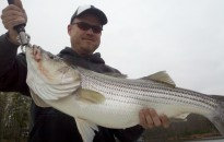 Stripers Bass 2011 2592x1936-96